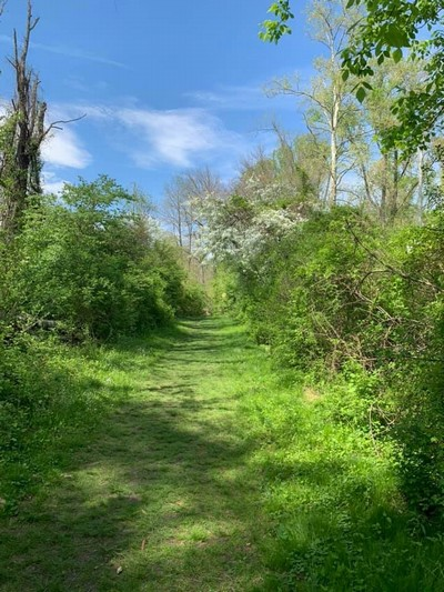 Trails - Middletown Township, Delaware County, Pennsylvania